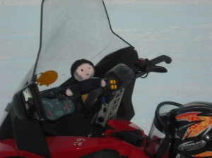 Driving the snowmobile