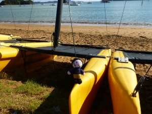 Catamaran at Bay of Islands 170313